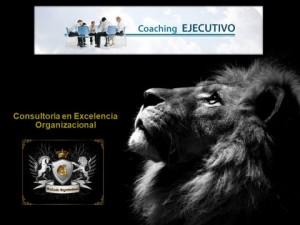 Coach Exec